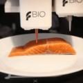 バイオ3Dプリンターで植物性代替サーモンを開発するLegendary Vish