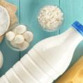 動物を使わないチーズを作るChange Foodsが約9100万円を資金調達、生乳市場の破壊へ乗り出す