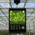 屋内農業用デバイスのiUNUが約7億円を調達、個々の農作物をリアルタイムでモニタリング