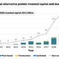 2020年の代替タンパク質投資額は31億ドルとGFIが報告、過去10年の投資額の半分が2020年に集中