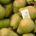 青果物の鮮度保持期間を延ばすHazel Technologiesが約76億円を調達