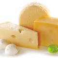 イスラエルのImagindairyは精密発酵でアニマルフリーな乳製品を開発