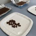 スイスの研究チームが研究室で細胞培養によるチョコレートを開発